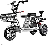 Alta velocidad De tres plazas eléctrico triciclo, 48V500W motor, batería de larga duración y pantalla de alta definición LEC, faros LED / Choque múltiple sistema de absorción ( Size : 20AH )