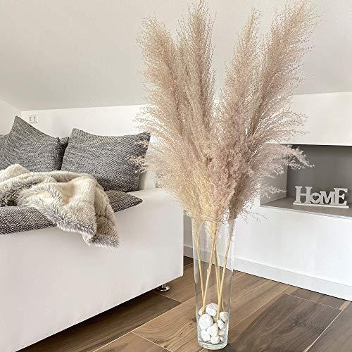 Naturalz pampasgras getrocknet, deko Gras Gross, Pampas Grass lang grau/beige, getrocknete trockenblumen groß, getrocknetes Pampas Gras deko Boho