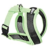 Gooby - Active X Head-in Harness, Choke Free Small Dog Harness with Synthetic Lambskin Soft Strap, Green, Small