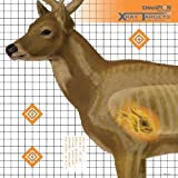 Champion Traps and Targets, Deer Target 25x25 (6 Pack) (45902)