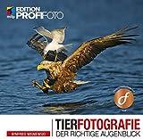 Tierfotografie: Der richtige Augenblick (mitp Edition ProfiFoto) (Broschiert)
