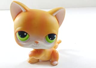 Kitten Shorthair #11 (Cat, Raised Paw, Orange, Green Eyes, Tabby Stripes) 2004 Littlest Pet Shop (Retired) Collector Toy - LPS Collectible Replacement Single Figure Loose (OOP Out of Package)