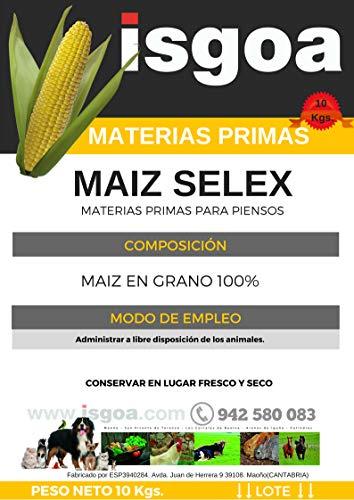 Maiz para Gallinas, Pollos.Saco 10 Kg Isgoa