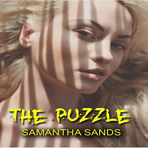 The Puzzle audiobook cover art