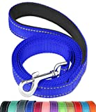 FunTags 6FT Reflective Dog Leash with Soft Padded Handle for Training,Walking Lead for Large & Medium Dog,1 Inch Wide,Royal Blue