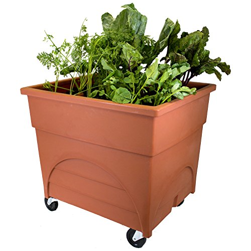 Emsco Group 2361D Deep 18' Planter Area-Includes Mobility Casters City Pickers Root Vegetable Raised Bed Grow Box, Terracotta