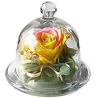 ダイヤが輝く大輪ローズ入りタッセル付きガラスドームプリザーブドフラワー 母の日 歓送迎会 結婚祝い 誕生日 出産祝い 開業祝い お悔み【Rainbow Rose Orange】