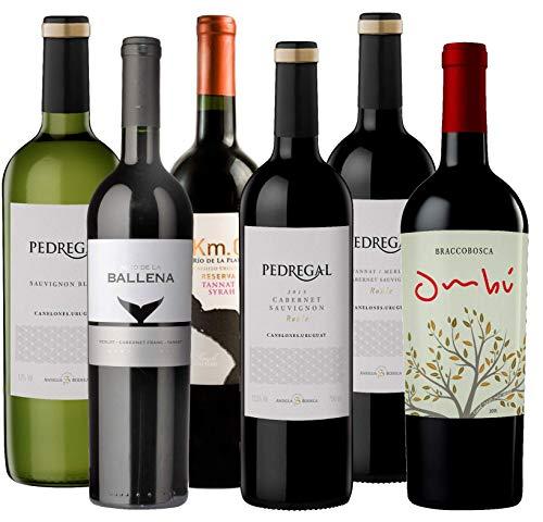 Atlantik Weine, Südamerika Weinpaket Taste of Uruguay mit Rotwein und Weißwein, Tannat Syrah Sauvignon Blanc Merlot Cabernet Franc Cabernet Sauvignon Syrah und Petit Verdot aus Uruguay (6 x 0,75l)