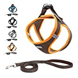 Suredoo Pet Reflective Soft Mesh Dog Harness and Leash Set, No Pull Breathable
