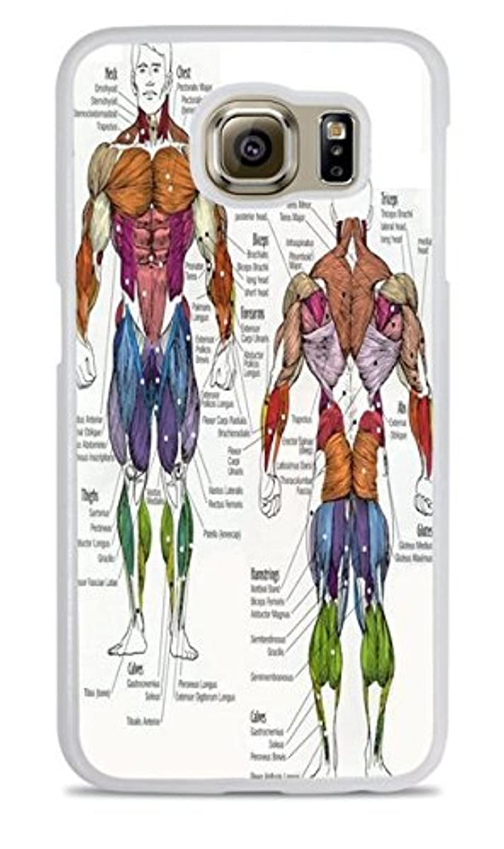 The Human Muscular System White Silicone Case for Samsung Galaxy S6 EDGE
