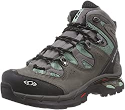 Salomon Women's Comet 3D Lady GTX-W, Autobahn/Lichen Green, 6 B US