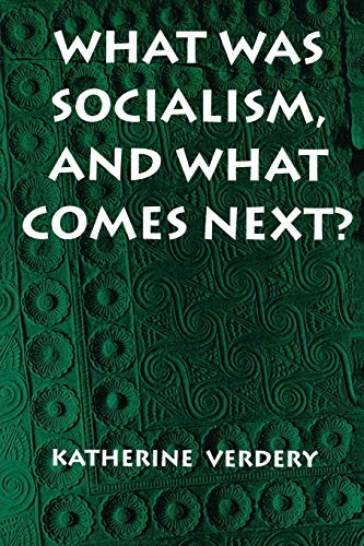 What Was Socialism, and What Comes Next? (Princeton Studies in Culture/Power/History)