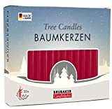 BRUBAKER Tree Candles - Pack of 20 - Dark Red - 9.5cm - Pyramids & Chimes