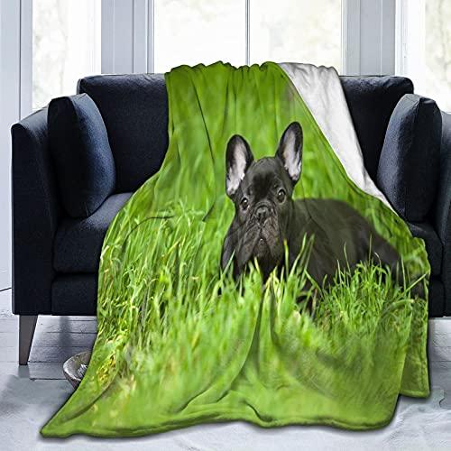Flannel Fleece Throw Blanket,French Bulldog Puppy Personalised Soft Warm Fuzzy Lightweight Blankets for Adult Kids Christmas Birthday G-i-f-t 60'x50'