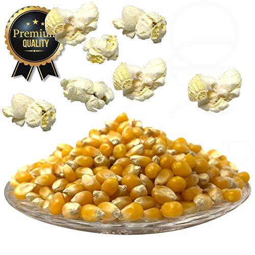 Premium Butterfly Popcorn Mais 1000g 1:50 Popvolumen Profi Mushroom Popcorn Mais geeignet für Backofen, Cretors Popcornmaschine und Mikrowellen