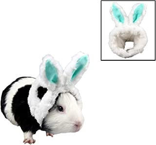 Best cute halloween costumes for guinea pigs Reviews
