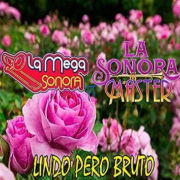 Lindo Pero Bruto  (feat. La Sonora Master)