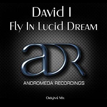 Fly In Lucid Dream