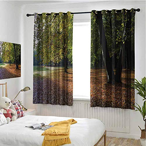 hengshu Nature Black Out Window Curtain 2 Panel Tranquil Tiergarten in Berlin Germany Forest Sightseeing Urban View Autumn Season for Backdrop Curtain W52 x L63 Inch Green Orange
