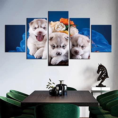 GUANGWEI 5 Piezas De Combinación De Lienzo De Alta Definición Moderno Flores Y Perro Mascota Murales De Oficina Sala De Estar Decoración De Dormitorio Habitación De Niños Regalos para El Hogar