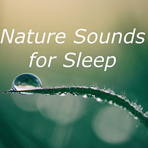 Ambient White Noise for Sleeping