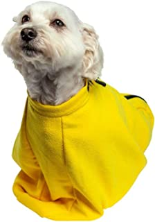 dirty wet dog