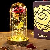 Rosa en Cristal con Luz,Cristal LED Rosa,Kit de Rosas la Bella y la Bestia,Rosa Artificial con Led,Egalos para Compromiso, Día de San Valentín, Día de la Madre, Aniversario, Decoración del hogar