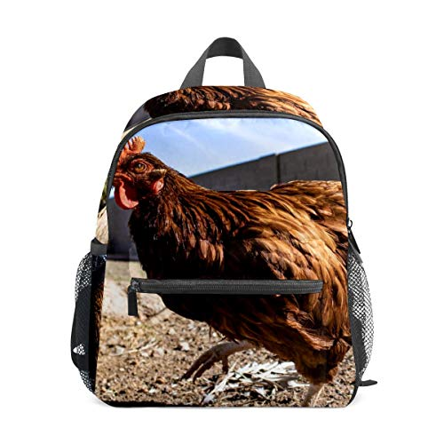 School Backpack for Kid Girls & Boys,Travel Children Bag Student Bookbag Casual Daypack Gift Brown Hen