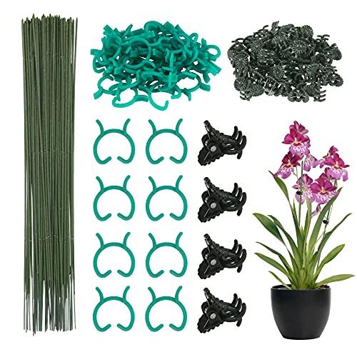 DKINY 50 Stück Pflanzenstützen Set Grüne Pflanzenstäbe aus Metall Kunststoff mit Pflanzenclips und Pflanzenbinder Pflanzenhalter Rankstäbe für Rosen Orchidee Tomaten Garten Pflanzen Rankhilfe 2mmx30cm