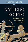 Antiguo Egipto: Introducción a su historia y cultura (Nun)
