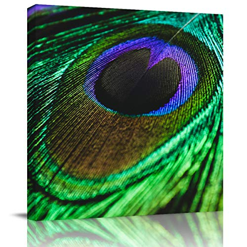 SUN-Shine Watercolor Abstract Peacock Feather Canvas Wall Art Oil Painting Prints Stretched and Framed Animals Texture Wall Artworks Picture for Living Room Kitchen Bedroom Decor, 8x8In
