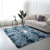 AMCER Alfombra De Salón, Pelo Largo alfombras, Antideslizante Ultra Suaves Acogedor, para niños Dormitorio Decoración para el hogar - B-Azul 200x250cm