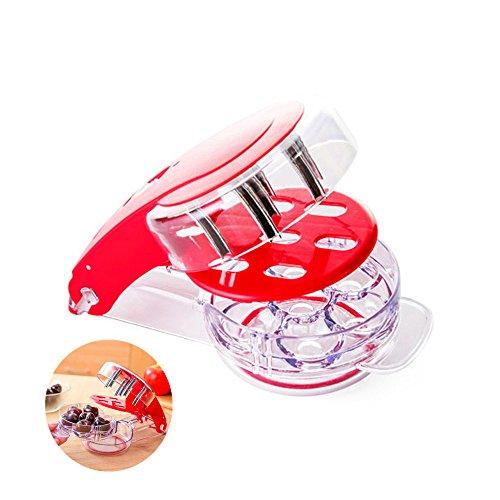 Locisne 6 Kirsch / Oliven Stoner, Home Küche Werkzeug Handheld Cherry Pitter Corer Oliven Pit Easy Removal Core Squeeze Clamp Sämaschine (Weiß)