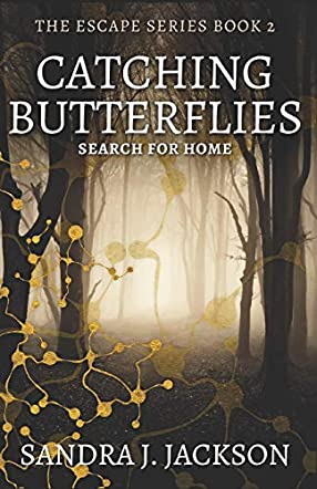 Catching Butterflies