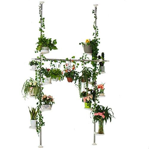 BAOYOUNI Innen Teleskop Blumenregal Blumenständer aus Metall Doppelte Spannregal Pflanzenständer Garten oder Balkon Pflanzenregal Ausstellungsstand mit 12 Schale für Hängend Pflanzen und Kleidung