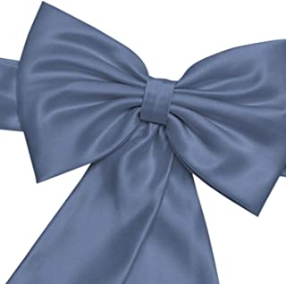 David's Bridal Satin Flower Girl Sash with Back Bow Style S1041