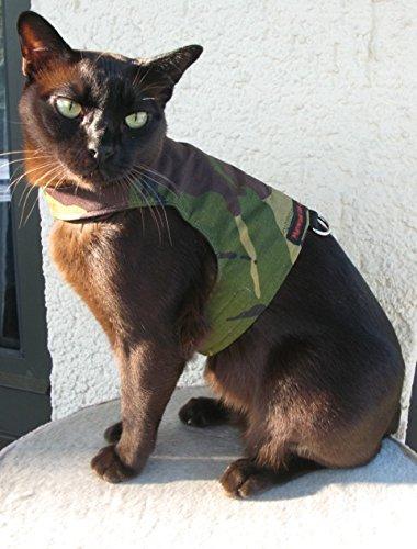 Mynwood Cat Jacke /Geschirre Grün Kampf Erwachsene Katze ausbruchsicher