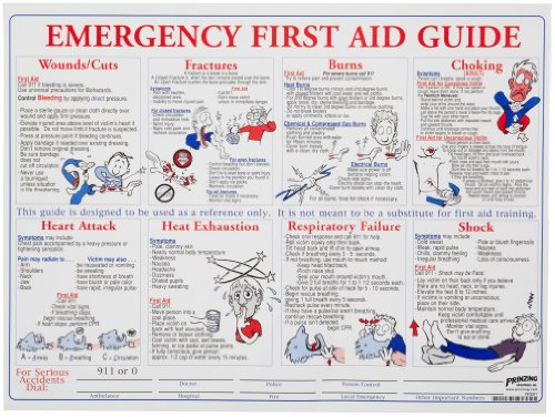 Brady PS128E 18' Height, 24' Width, Laminated Paper, Black, Red, Blue On White Color Prinzing First Aid Training Poster, Legend 'Emergency First Aid Guide'