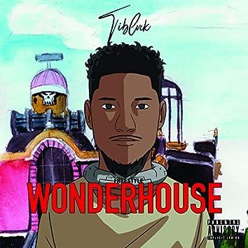 Freestyle wonderhouse