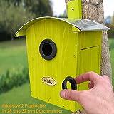 Zoom IMG-1 habau 2962 nido con tetto
