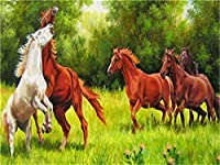 大人の子供のためのDIY油絵 草の上の馬 数字で描く油絵キットカラフルなアクリル画ブラシ付きペイント40x50CM(フレームなし)家の壁の装飾用