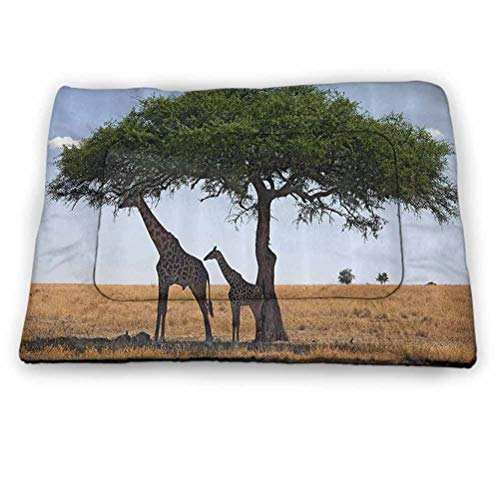 Pet Crate Mat Dog Bed Safari Decor Collection Indoor Pet Training Mat Baby and Mom Giraffe under the Tree the Tallest Animal Mammal in Savannahs Nature Art Photo Use for Pet,All Seasons (23'x15.5')