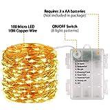 LED Lichterkette Batterie, otumixx 2er 10M 100 Micro LED Lichterkette 8 Modi Batteriebetrieben Kupferdraht Wasserdicht IP68 mit Fernbedienung und Timer für Innen/Außen Weihnachten Deko, Warmweiß - 2