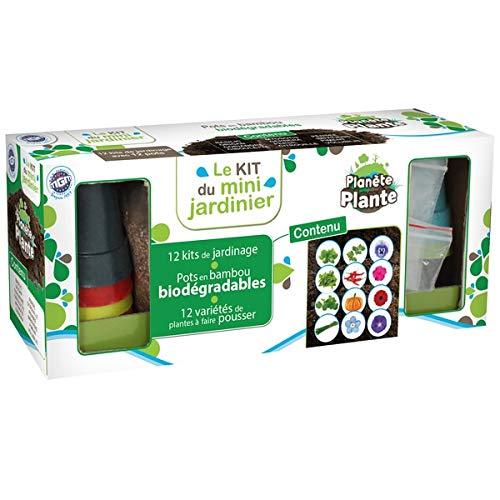 PLANETE PLANTE 12 Pots biodegradables en Bambou et Graines À Planter - 12 Variétés De Plantes - Kit De Jardinage - 8 cm - À Partir de 4 Ans