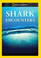 Shark Encounters [DVD] [Import]