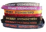 Dogidogs Personalisiertes Hunde Halsband mit Namen und Telefonnummer Bestickt, Vier Größen, Sieben Farben (XL (Breite 40 mm, Länge 55-75 cm))