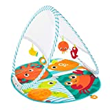 Fisher-Price Fold & Go Portable Gym, Ocean-Themed Infant Activity Mat