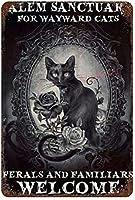 RCY-T ブリキサイン,Black Cat Salem Sanctuary ブリキサイン Wall Art Decor メタルサイン, Public Sign, Decoration Sign 8 X 12 Inches