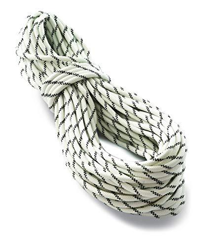 Tendon 11,0mm Static Rope Pro Work Statik Kletterseil, Farbe:weiß, Länge:30 m