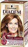 Diadem Seiden-Color-Creme V75 Warmes Goldbraun Vital Beauty, 3er Pack (3 x 142 ml)